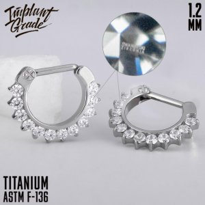 Glam Hinged Segment Ring 1.2 (16 G)