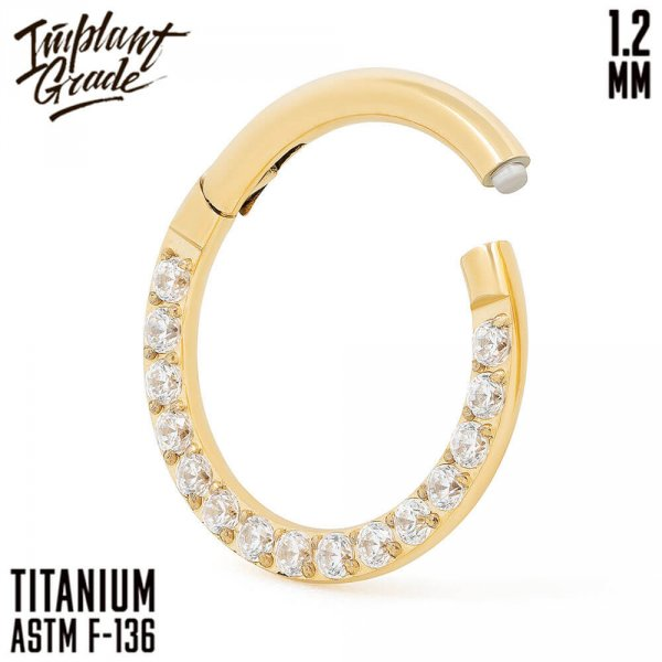 Side Gold Hinged Segment Ring 1.2 (16 G)