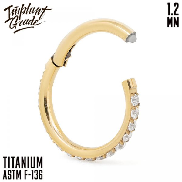 Twilight Gold Hinged Segment Ring 1.2 (16 G)